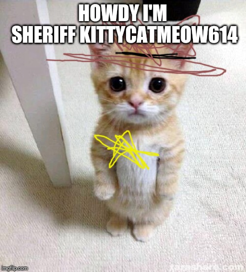 Cute Cat Meme | HOWDY I'M SHERIFF KITTYCATMEOW614 | image tagged in memes,cute cat | made w/ Imgflip meme maker