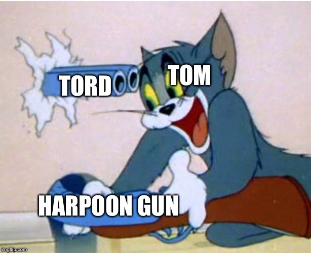 Tom and Jerry | TOM TORD HARPOON GUN | image tagged in tom and jerry | made w/ Imgflip meme maker