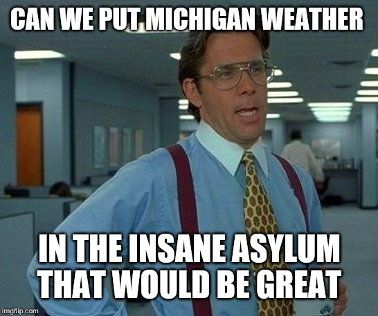 When Michigan weather goes insane | CAN WE PUT MICHIGAN WEATHER IN THE INSANE ASYLUM THAT WOULD BE GREAT | image tagged in memes,that would be great | made w/ Imgflip meme maker
