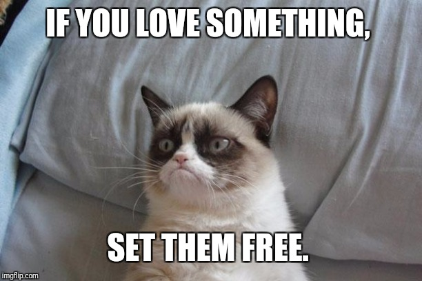 Grumpy Cat Bed Meme | IF YOU LOVE SOMETHING, SET THEM FREE. | image tagged in memes,grumpy cat bed,grumpy cat | made w/ Imgflip meme maker