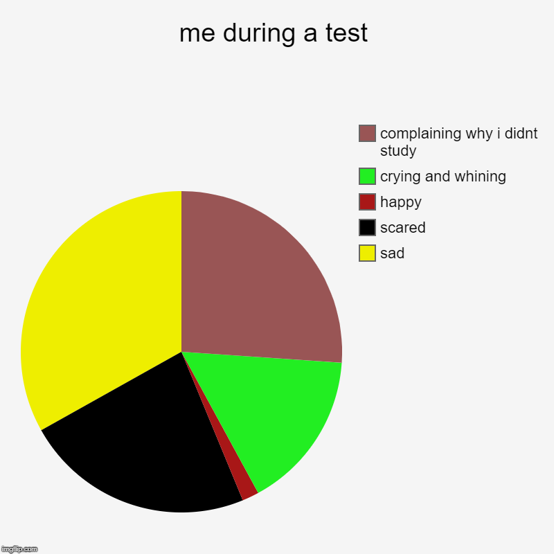 me during a test | sad, scared, happy, crying and whining, complaining why i didnt study | image tagged in charts,pie charts | made w/ Imgflip chart maker