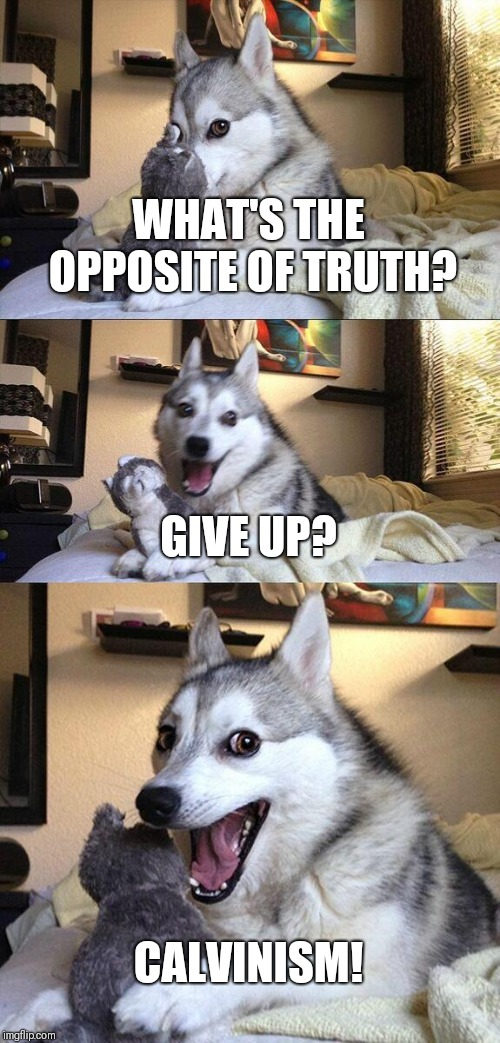 Bad Pun Dog Meme |  WHAT'S THE OPPOSITE OF TRUTH? GIVE UP? CALVINISM! | image tagged in memes,bad pun dog | made w/ Imgflip meme maker