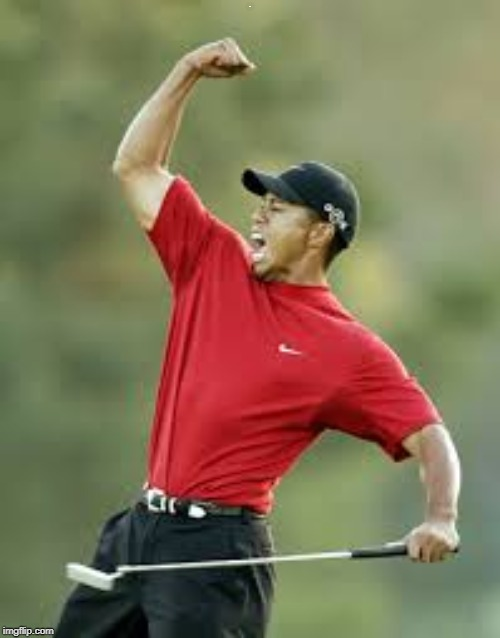 Congrats to Tiger Woods for winning THE MASTERS! | M | image tagged in tiger woods,super job | made w/ Imgflip meme maker