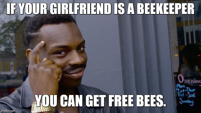 Roll Safe Think About It Meme | IF YOUR GIRLFRIEND IS A BEEKEEPER YOU CAN GET FREE BEES. | image tagged in memes,roll safe think about it,bad puns,double entendres,bees | made w/ Imgflip meme maker