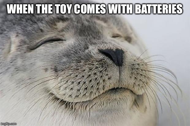 Satisfied Seal |  WHEN THE TOY COMES WITH BATTERIES | image tagged in memes,satisfied seal | made w/ Imgflip meme maker