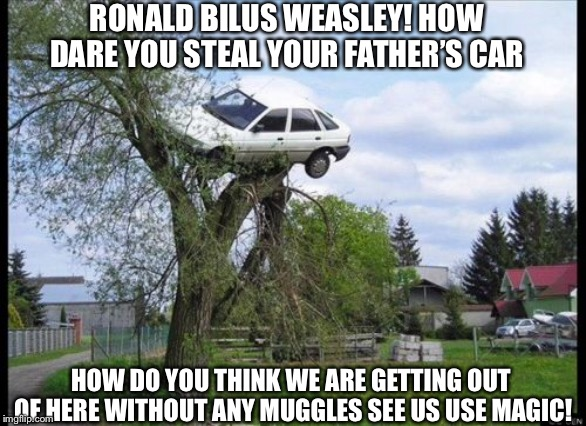 Secure Parking | RONALD BILUS WEASLEY! HOW DARE YOU STEAL YOUR FATHER'S CAR HOW DO YOU THINK WE ARE GETTING OUT OF HERE WITHOUT ANY MUGGLES SEE US USE MAGIC! | image tagged in memes,secure parking | made w/ Imgflip meme maker