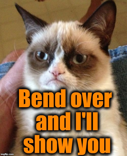 Grumpy Cat Meme | Bend over and I'll show you | image tagged in memes,grumpy cat | made w/ Imgflip meme maker