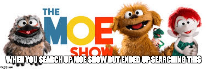 When searching up something but somehow came across this | WHEN YOU SEARCH UP MOE SHOW BUT ENDED UP SEARCHING THIS | image tagged in the moe show,moe,searching,animeme,tv show,puppet | made w/ Imgflip meme maker