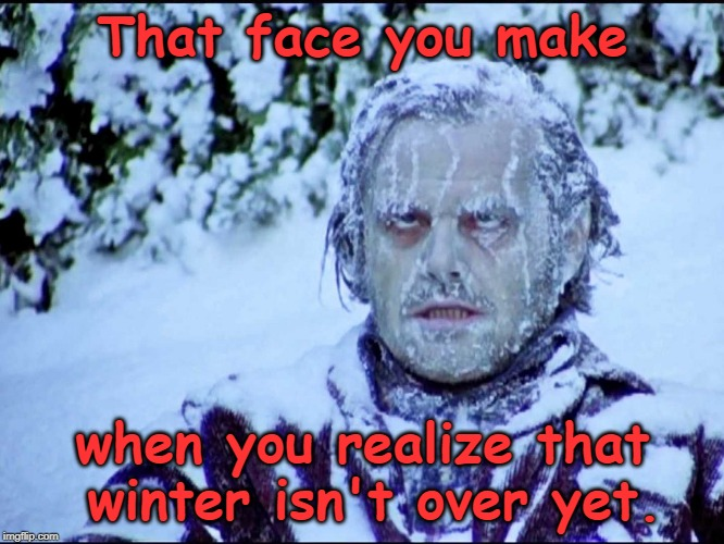 Frozen Jack | That face you make when you realize that winter isn't over yet. | image tagged in frozen jack,the shining,jack nicholson the shining snow,winter,memes | made w/ Imgflip meme maker
