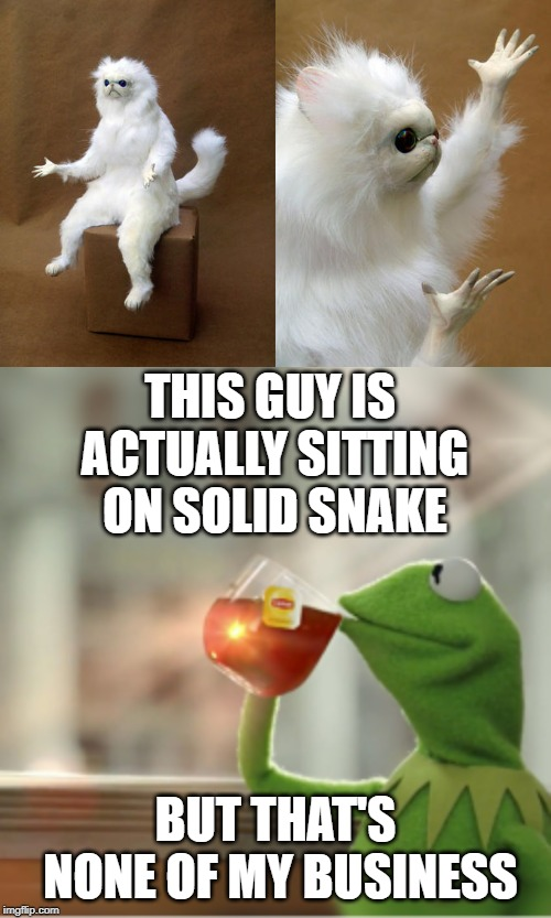 THIS GUY IS ACTUALLY SITTING ON SOLID SNAKE BUT THAT'S NONE OF MY BUSINESS | image tagged in memes,persian cat room guardian | made w/ Imgflip meme maker