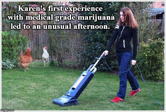 101 backyard activities. | Karen's first experience with medical grade marijuana led to an unusual afternoon. | image tagged in high ground | made w/ Imgflip meme maker