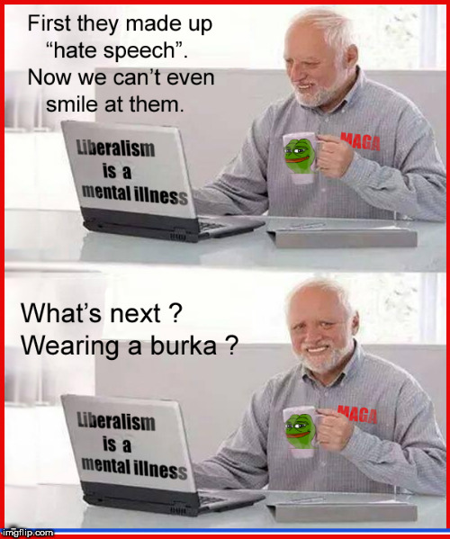 Hide the hate speech Harold | . | image tagged in hate speech,hide the pain harold,burkas,censorship,politics lol,lol so funny | made w/ Imgflip meme maker