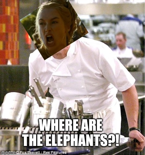 Lamb Sauce | WHERE ARE THE ELEPHANTS?! | image tagged in lamb sauce | made w/ Imgflip meme maker