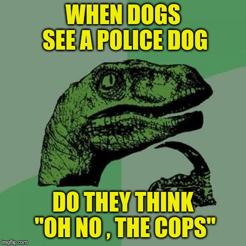 "Do you know what your Dog named you ? | WHEN DOGS SEE A POLICE DOG DO THEY THINK ""OH NO , THE COPS"" 