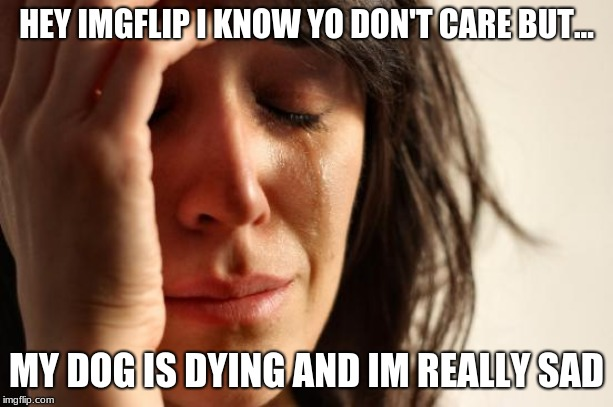 First World Problems Meme | HEY IMGFLIP I KNOW YO DON'T CARE BUT... MY DOG IS DYING AND IM REALLY SAD | image tagged in memes,first world problems | made w/ Imgflip meme maker