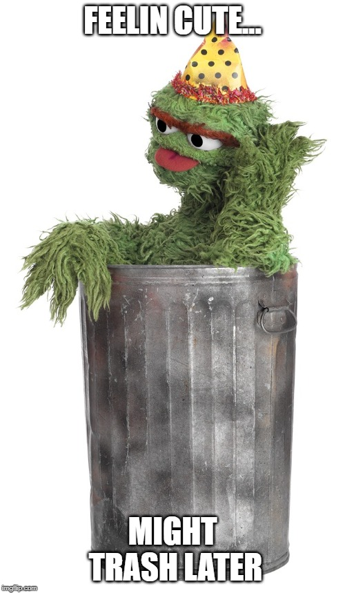 So trashy | FEELIN CUTE... MIGHT TRASH LATER | image tagged in funny | made w/ Imgflip meme maker