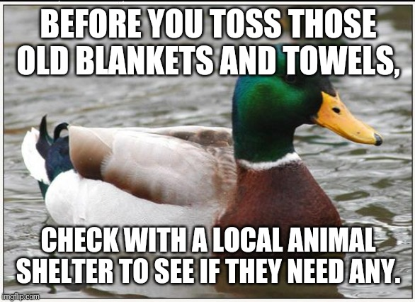 Actual Advice Mallard | BEFORE YOU TOSS THOSE OLD BLANKETS AND TOWELS, CHECK WITH A LOCAL ANIMAL SHELTER TO SEE IF THEY NEED ANY. | image tagged in memes,actual advice mallard,AdviceAnimals | made w/ Imgflip meme maker