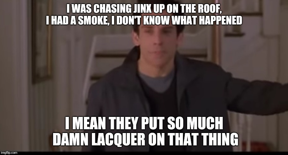 I WAS CHASING JINX UP ON THE ROOF, I HAD A SMOKE, I DON'T KNOW WHAT HAPPENED I MEAN THEY PUT SO MUCH DAMN LACQUER ON THAT THING | image tagged in so much lacquer,AdviceAnimals | made w/ Imgflip meme maker
