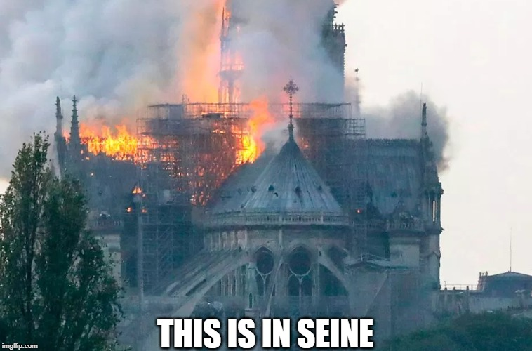 THIS IS IN SEINE | made w/ Imgflip meme maker