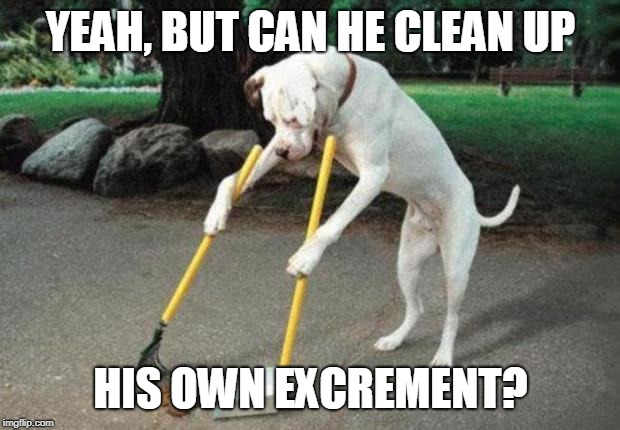 Dog poop | YEAH, BUT CAN HE CLEAN UP HIS OWN EXCREMENT? | image tagged in dog poop | made w/ Imgflip meme maker
