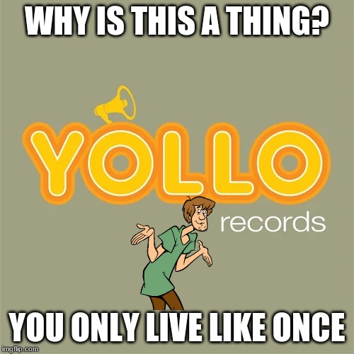 You Only Live Like Once | WHY IS THIS A THING? YOU ONLY LIVE LIKE ONCE | image tagged in scooby doo,shaggy,yollo,yolo,i want food,meme meme | made w/ Imgflip meme maker