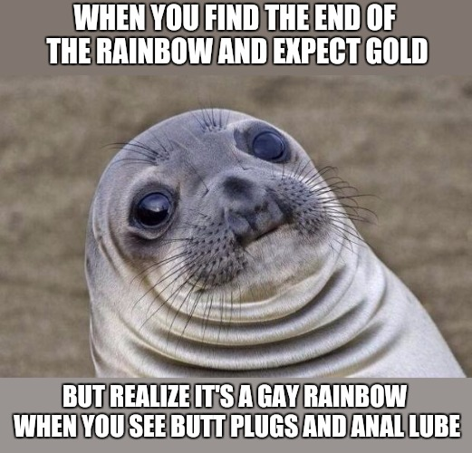 Awkward Moment Sealion Meme | WHEN YOU FIND THE END OF THE RAINBOW AND EXPECT GOLD BUT REALIZE IT'S A GAY RAINBOW WHEN YOU SEE BUTT PLUGS AND ANAL LUBE | image tagged in memes,awkward moment sealion | made w/ Imgflip meme maker