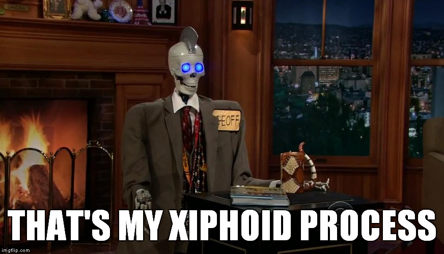 geoff peterson | THAT'S MY XIPHOID PROCESS | image tagged in geoff peterson | made w/ Imgflip meme maker