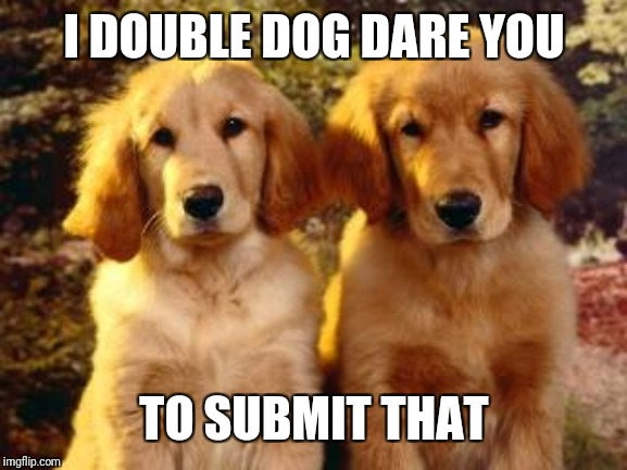 two dogs | I DOUBLE DOG DARE YOU TO SUBMIT THAT | image tagged in two dogs | made w/ Imgflip meme maker