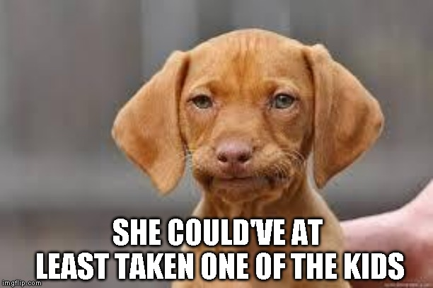Disappointed Dog | SHE COULD'VE AT LEAST TAKEN ONE OF THE KIDS | image tagged in disappointed dog | made w/ Imgflip meme maker