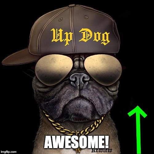 up dog | AWESOME! | image tagged in up dog | made w/ Imgflip meme maker