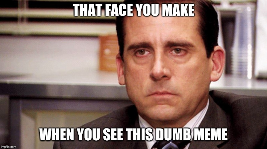 THAT FACE YOU MAKE WHEN YOU SEE THIS DUMB MEME | image tagged in the office | made w/ Imgflip meme maker