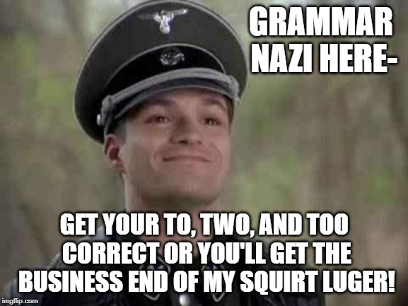grammar nazi | GRAMMAR NAZI HERE- GET YOUR TO, TWO, AND TOO CORRECT OR YOU'LL GET THE BUSINESS END OF MY SQUIRT LUGER! | image tagged in grammar nazi | made w/ Imgflip meme maker