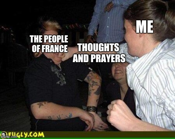 Face punch | ME THOUGHTS AND PRAYERS THE PEOPLE OF FRANCE | image tagged in face punch | made w/ Imgflip meme maker