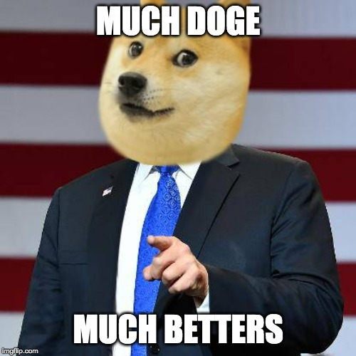 Very Much Doge | MUCH DOGE MUCH BETTERS | image tagged in doge,donald trump,trump,minecraft,murica,doge 2 | made w/ Imgflip meme maker