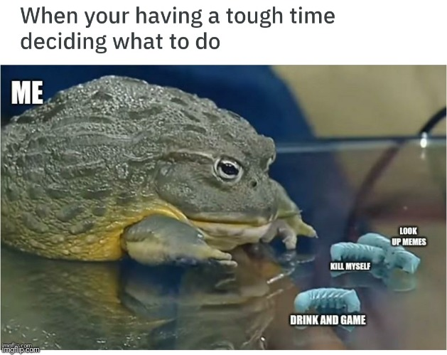 image tagged in memes,frog,dank,kill me | made w/ Imgflip meme maker
