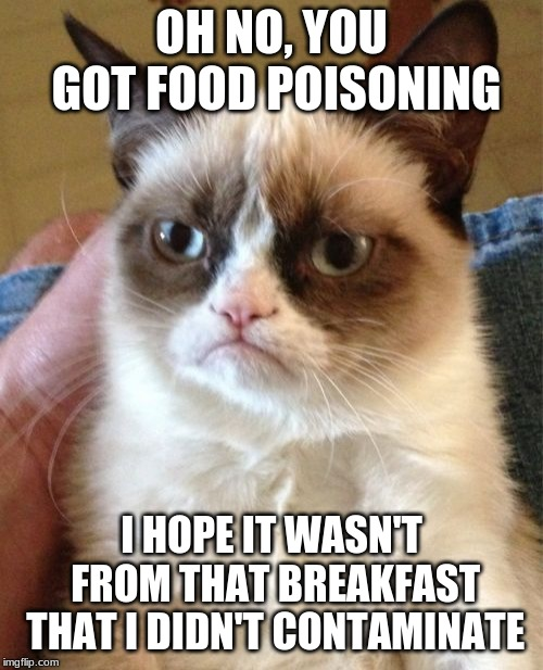 Grumpy Cat | OH NO, YOU GOT FOOD POISONING I HOPE IT WASN'T FROM THAT BREAKFAST THAT I DIDN'T CONTAMINATE | image tagged in memes,grumpy cat | made w/ Imgflip meme maker