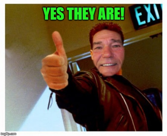 thumbs up | YES THEY ARE! | image tagged in thumbs up | made w/ Imgflip meme maker