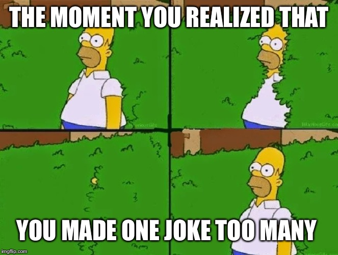 HOMER BUSH |  THE MOMENT YOU REALIZED THAT; YOU MADE ONE JOKE TOO MANY | image tagged in homer bush | made w/ Imgflip meme maker