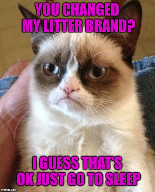 Grumpy Cat | YOU CHANGED MY LITTER BRAND? I GUESS THAT'S OK JUST GO TO SLEEP | image tagged in memes,grumpy cat | made w/ Imgflip meme maker