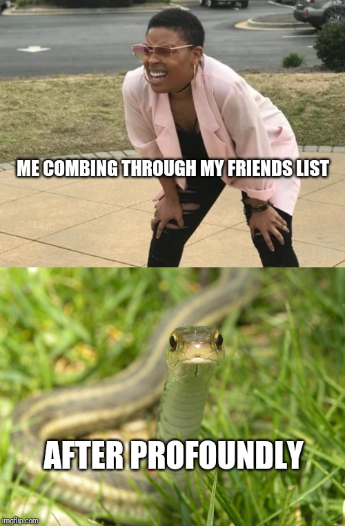 ME COMBING THROUGH MY FRIENDS LIST AFTER PROFOUNDLY | image tagged in snake | made w/ Imgflip meme maker