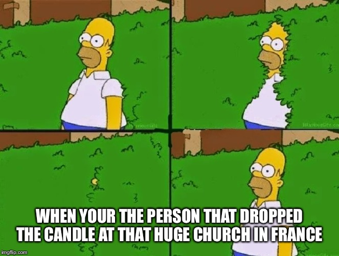 HOMER BUSH | WHEN YOUR THE PERSON THAT DROPPED THE CANDLE AT THAT HUGE CHURCH IN FRANCE | image tagged in homer bush | made w/ Imgflip meme maker