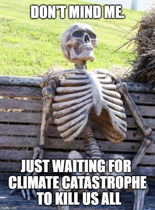 aoc umm like 12 years | JUST WAITING FOR CLIMATE CATASTROPHE TO KILL US ALL DON'T MIND ME. | image tagged in memes,waiting skeleton,climate change,alexandria ocasio-cortez,moron | made w/ Imgflip meme maker