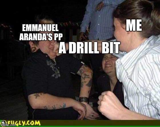Face punch | ME A DRILL BIT EMMANUEL ARANDA'S PP | image tagged in face punch | made w/ Imgflip meme maker