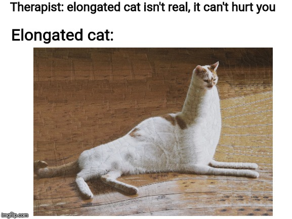 Elongated cat is here | Therapist: elongated cat isn't real, it can't hurt you Elongated cat: | image tagged in memes | made w/ Imgflip meme maker