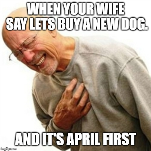 Right In The Childhood | WHEN YOUR WIFE SAY LETS BUY A NEW DOG. AND IT'S APRIL FIRST | image tagged in memes,right in the childhood | made w/ Imgflip meme maker