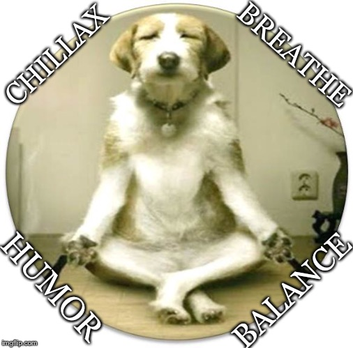 Chillax the F Out! | CHILLAX BALANCE BREATHE HUMOR | image tagged in half lotus,chillax,breathe,humor,balance | made w/ Imgflip meme maker