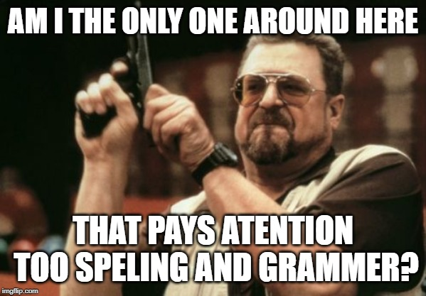 No one seams to worry about speling any moor | AM I THE ONLY ONE AROUND HERE THAT PAYS ATENTION TOO SPELING AND GRAMMER? | image tagged in memes,am i the only one around here,spelling,grammar nazi | made w/ Imgflip meme maker