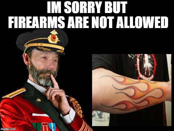 no firearms |  IM SORRY BUT FIREARMS ARE NOT ALLOWED | image tagged in kewlew as captain obvious,firearms | made w/ Imgflip meme maker