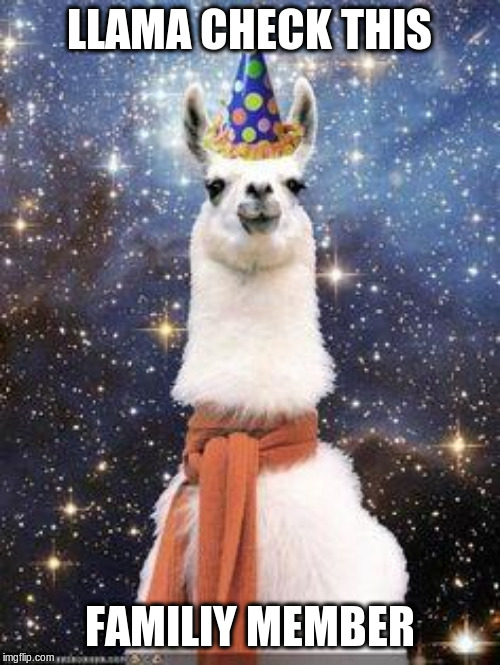 Drama Llama Birthday | LLAMA CHECK THIS FAMILIY MEMBER | image tagged in drama llama birthday | made w/ Imgflip meme maker