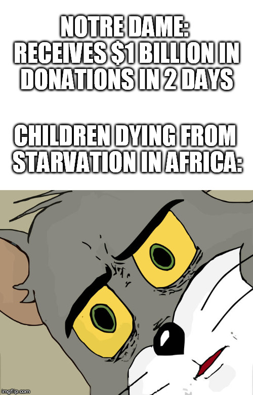 Every 15 seconds a child dies of hunger |  NOTRE DAME: RECEIVES $1 BILLION IN DONATIONS IN 2 DAYS; CHILDREN DYING FROM STARVATION IN AFRICA: | image tagged in unsettled tom,notre dame,starvation,dying,children,hypocrisy | made w/ Imgflip meme maker